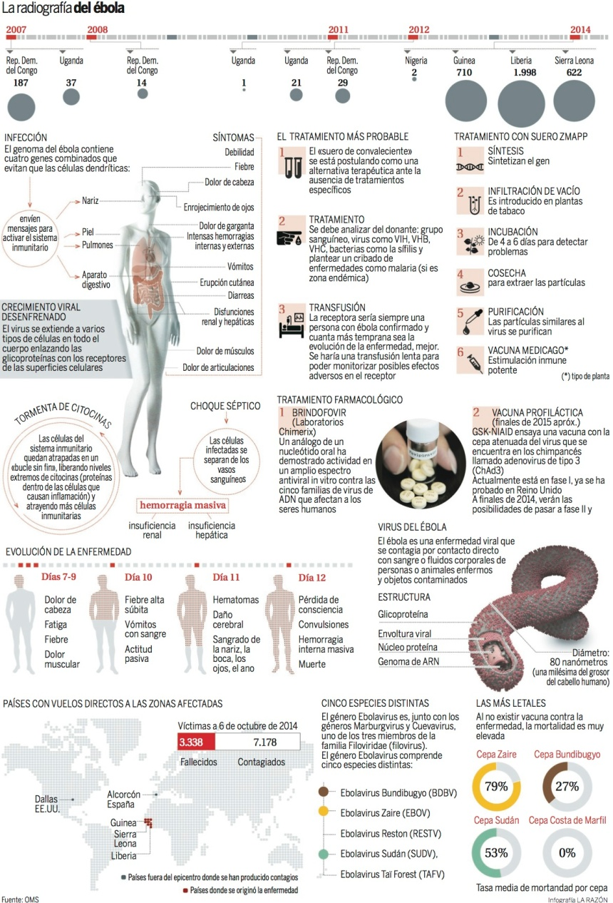 La radiografía del Ébola