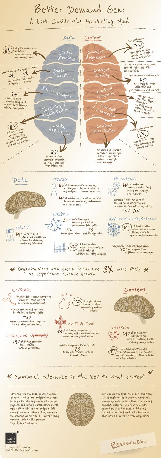Anatomía de un cerebro de marketing efectivo