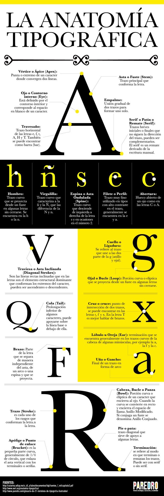 La anatomía tipográfica