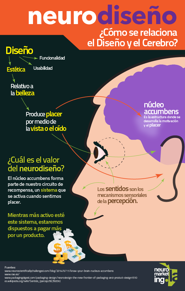 Neurodiseño: cómo se relaciona el Diseño y el Cerebro